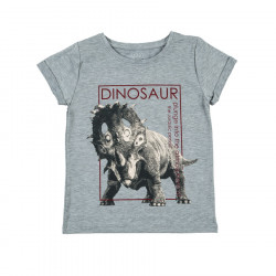 Футболка для мальчика, меланж. Динозавр.