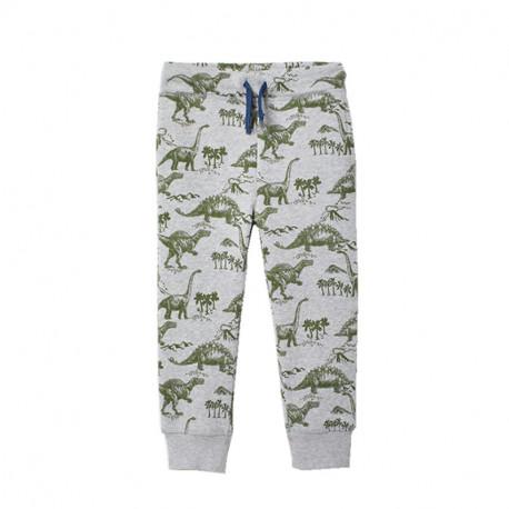 Штаны для мальчика, серые. Эра динозавров.