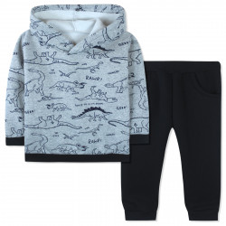 Утепленный костюм для мальчика, серый. Прогулка динозавров.