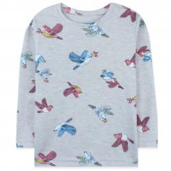 Кофта для девочки, реглан, светло-серый. Разноцветные птички.